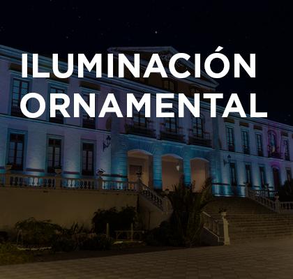 ornamental2_2